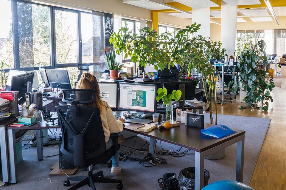 Un espace de travail moderne, lumineux et écologique
